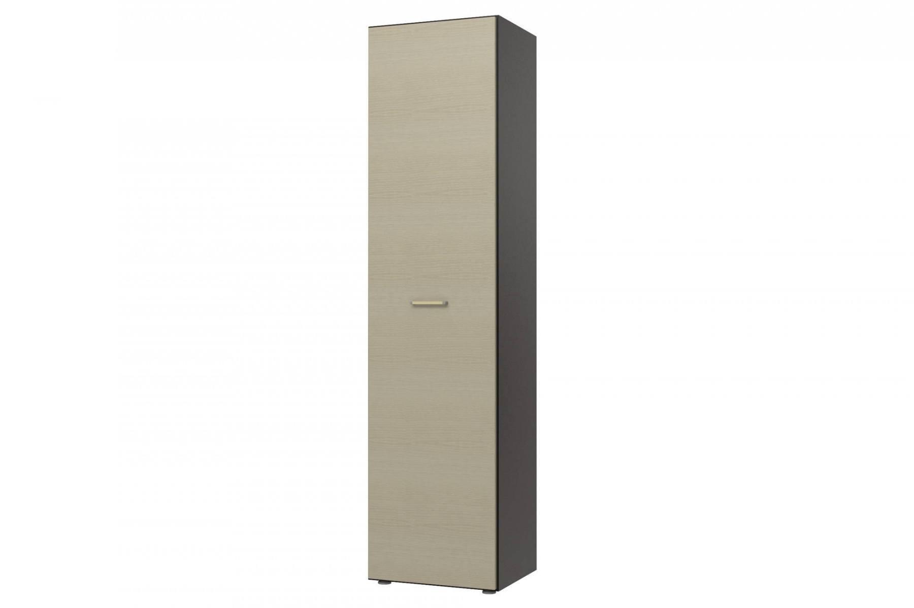 Шкаф напольный Пассаж СБ-825